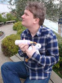 Tender seagull - garden birds