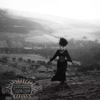 gothic-dress-morticia-2