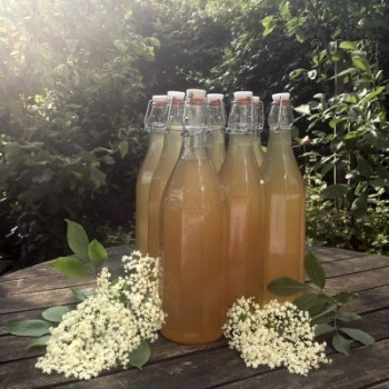 elderflower-champagne-recipe-bottles