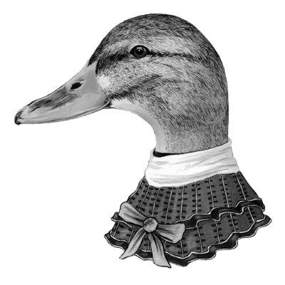 cryptic-crossword-duck